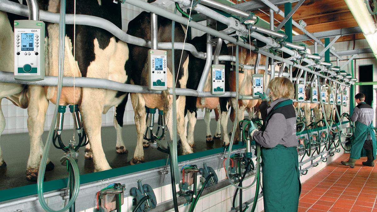 повреждений статора молочные дойки в контакте республиканское